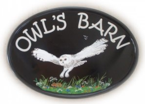 Snowy Owl sign - Painted by Jean on a New World classic oval base plaque. The customer requested a pictorial of an owl swooping down to a little mouse. Font is called  Kristen