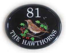 Thrush on a Hawthorn branch - painted on a large classic oval plaque.